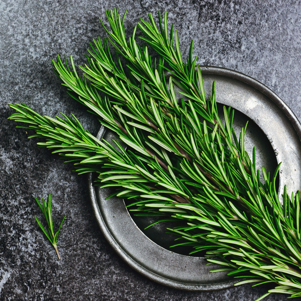 Rosemary, fresh : Bunch