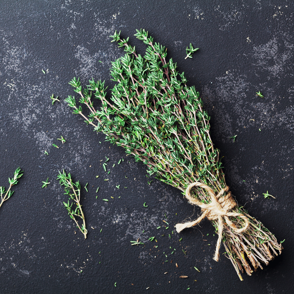 Thyme, fresh : Bunch