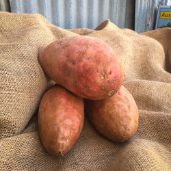 Sweet Potato : KG