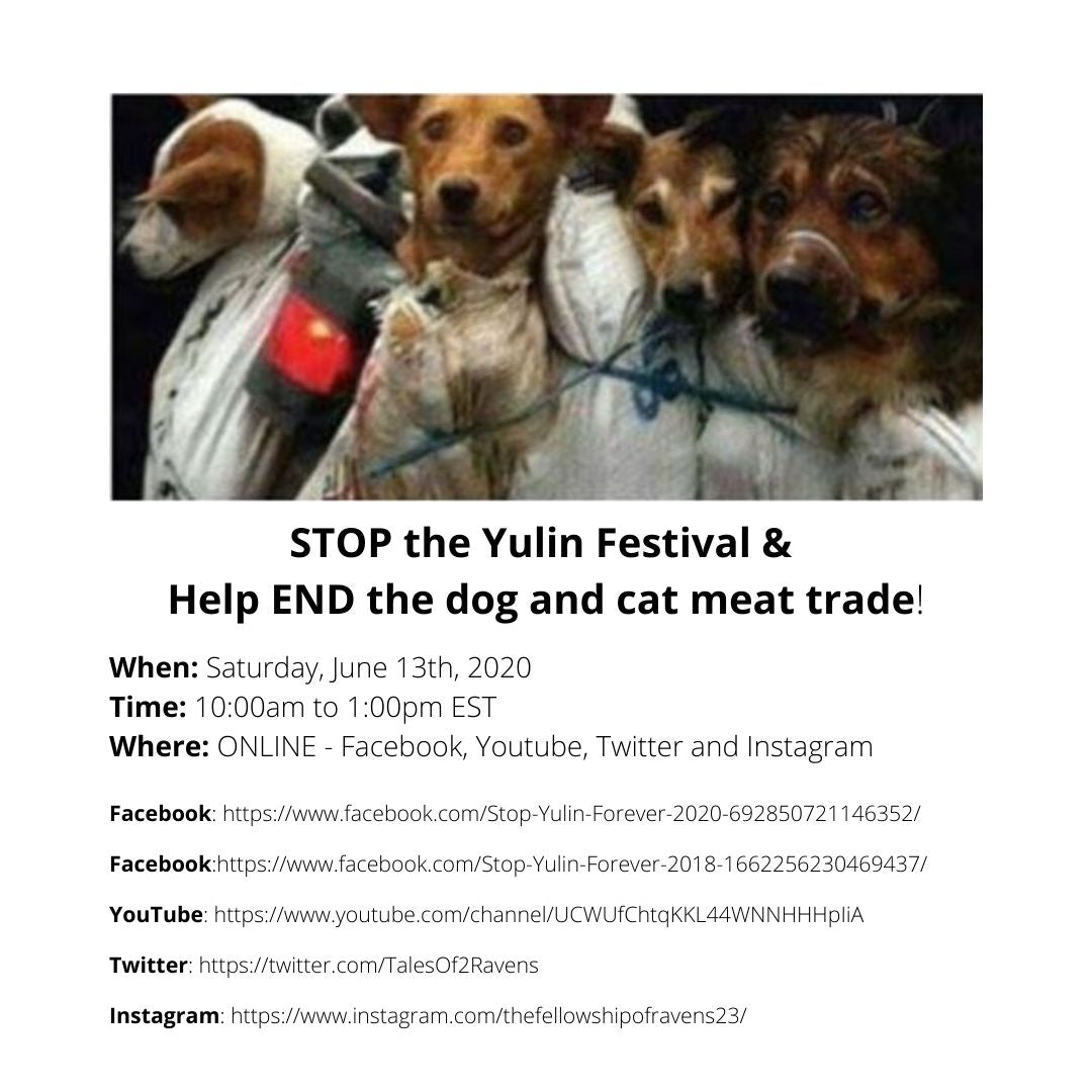 STOP the Yulin Festival & Help END the dog and cat meat trade!