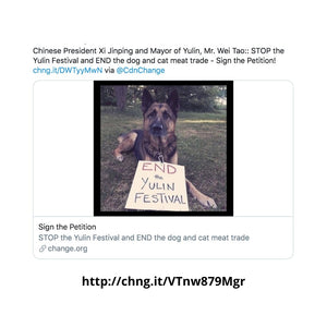 STOP the Yulin Festival Virtual Rally - How To Help