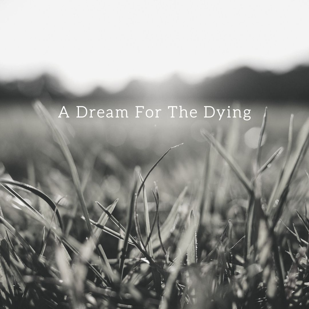 A Dream For The Dying