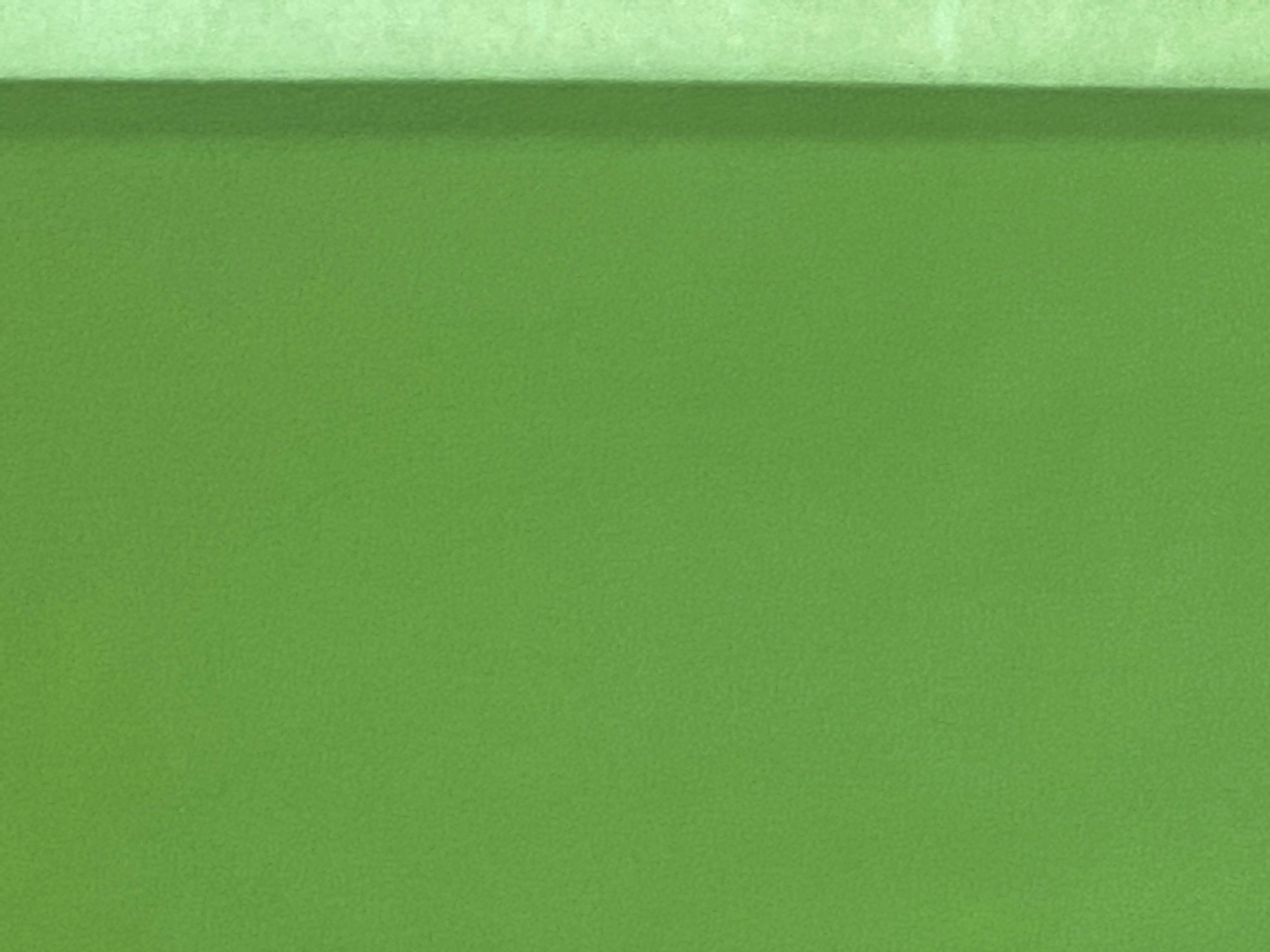 Valencia Spring Green Leather Lambskin : Italian Lamb Nappa (0.6-0.7mm) Perfect For Clothing , Leather Jackets , Leather Crafts , Leather Bags , Leather Shoes