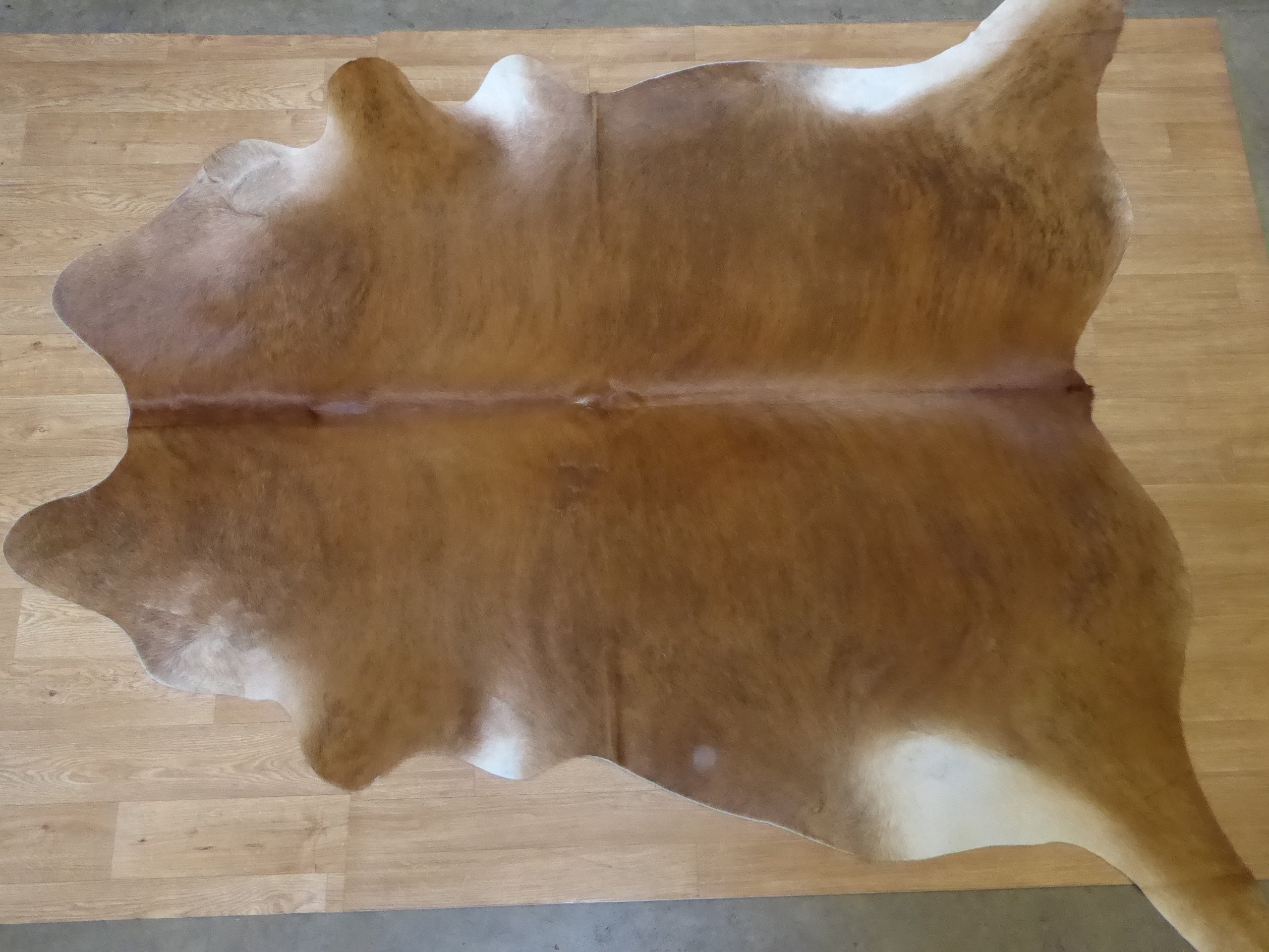 Natural Hair On Cow Hide :This Hide Is Perfect For Wall Hanging, Leather Rugs, Leather Bags & Leather Accessories (pic code : 1010980)