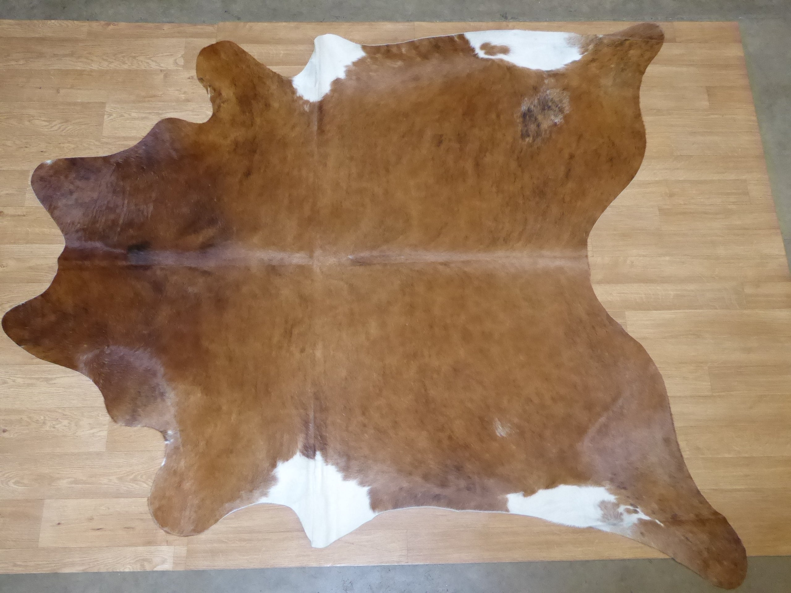 Natural Hair On Cow Hide : This Hide Is Perfect For Wall Hanging, Leather Rugs, Leather Bags & Accessories (pic code 1010984)