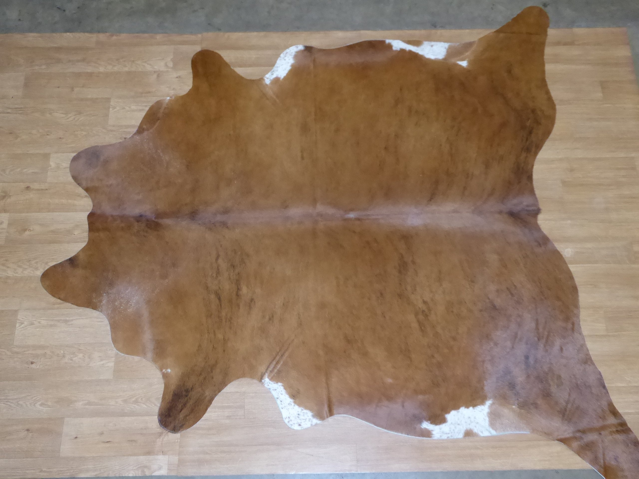 Natural Hair On Cow Hide : This Hide Is Perfect For Wall Hanging, Leather Rugs, Leather Bags & Leather Accessories (pic code 1010988)