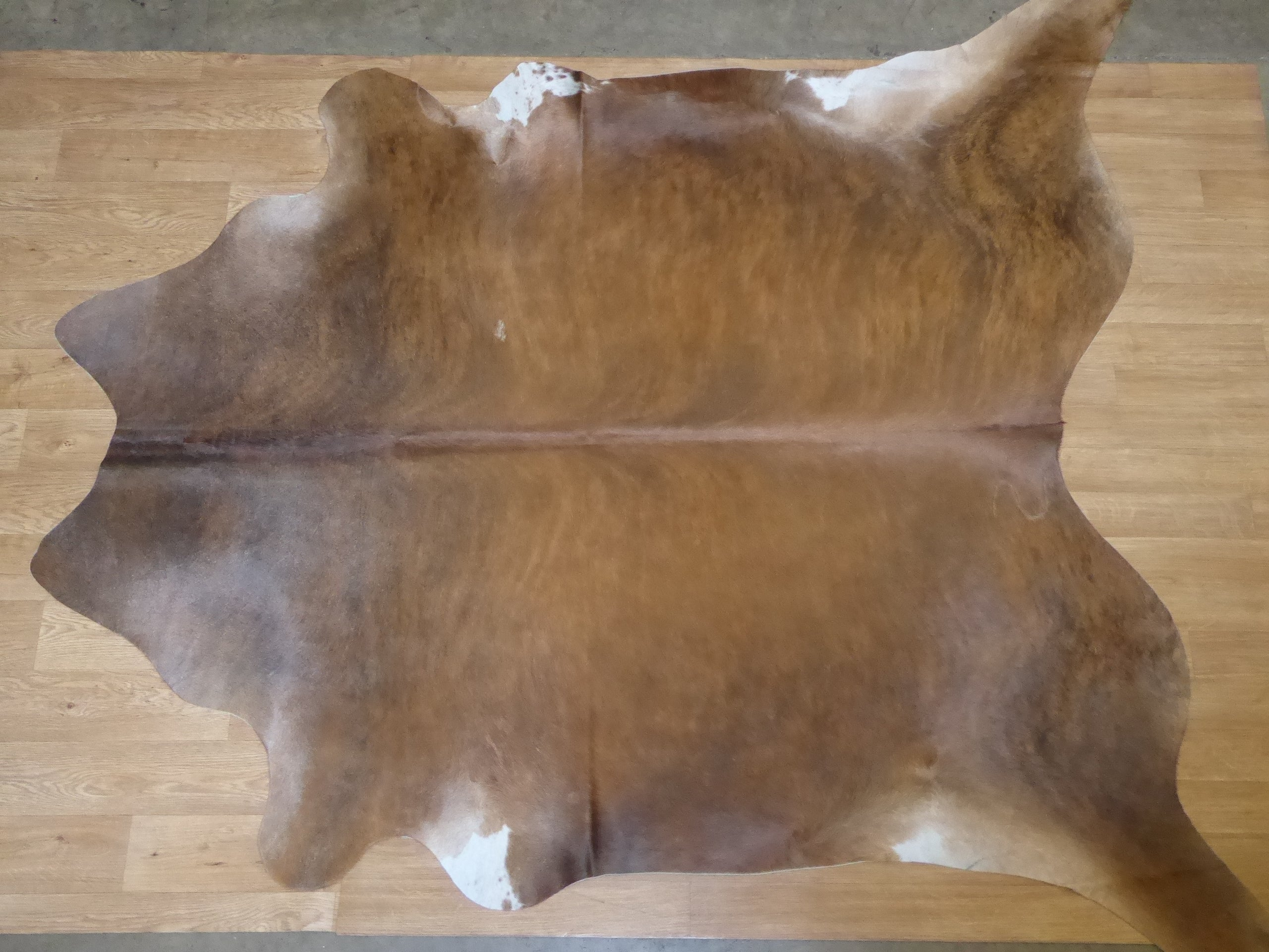Natural Hair On Cow Hide : This Hide Is Perfect For Wall Hanging, Leather Rugs, Leather Bags & Accessories (pic code 1010997)