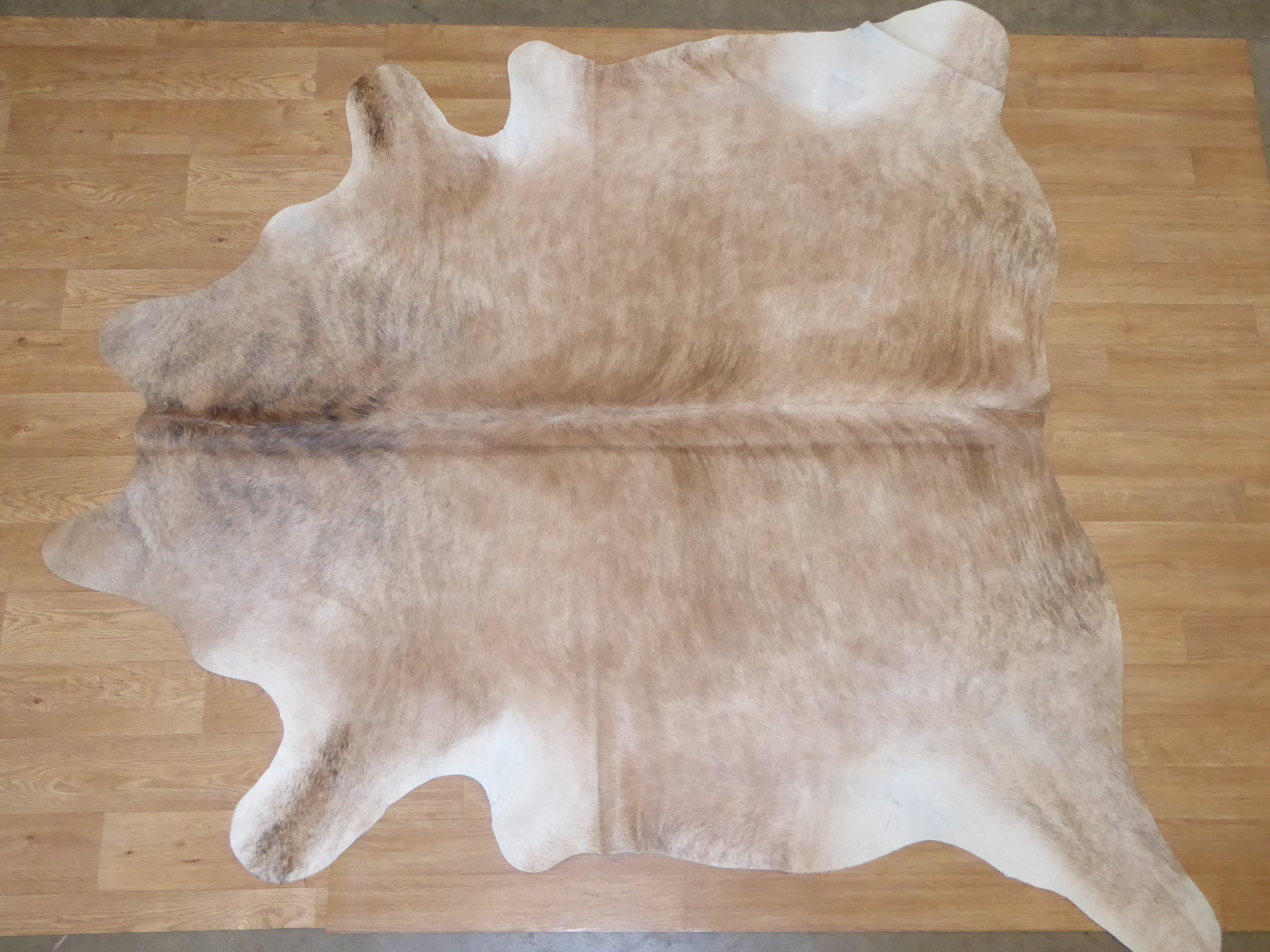 Natural Hair On Cow Hide : This Hide Is Perfect For Wall Hanging, Leather Rugs, Leather Bags & Leather Accessories (pic code 1020057)