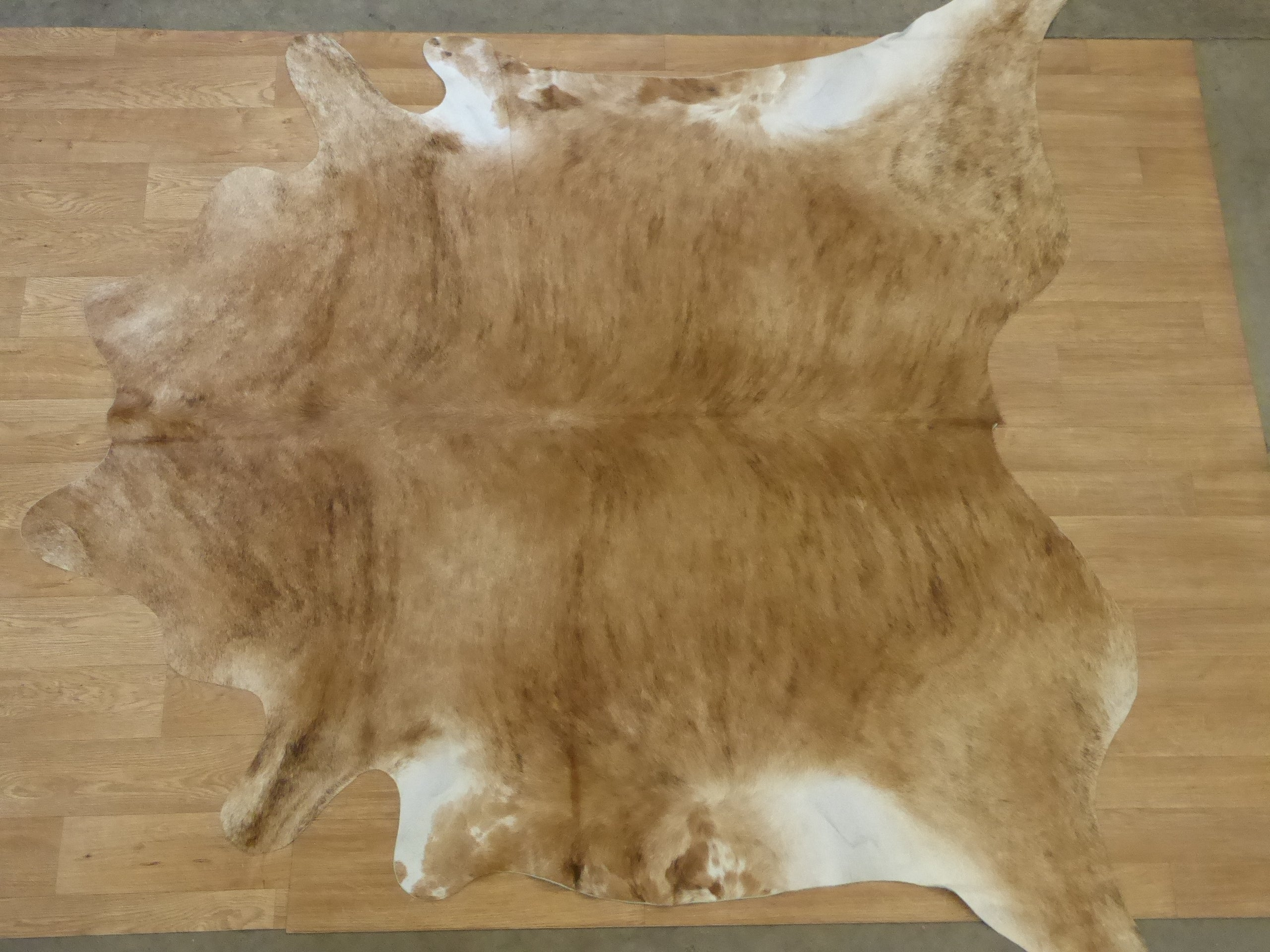 Natural Hair On Cow Hide : This Hide Is Perfect For Wall Hanging, Leather Rugs, Leather Bags & Leather Accessories (pic code 1020065)