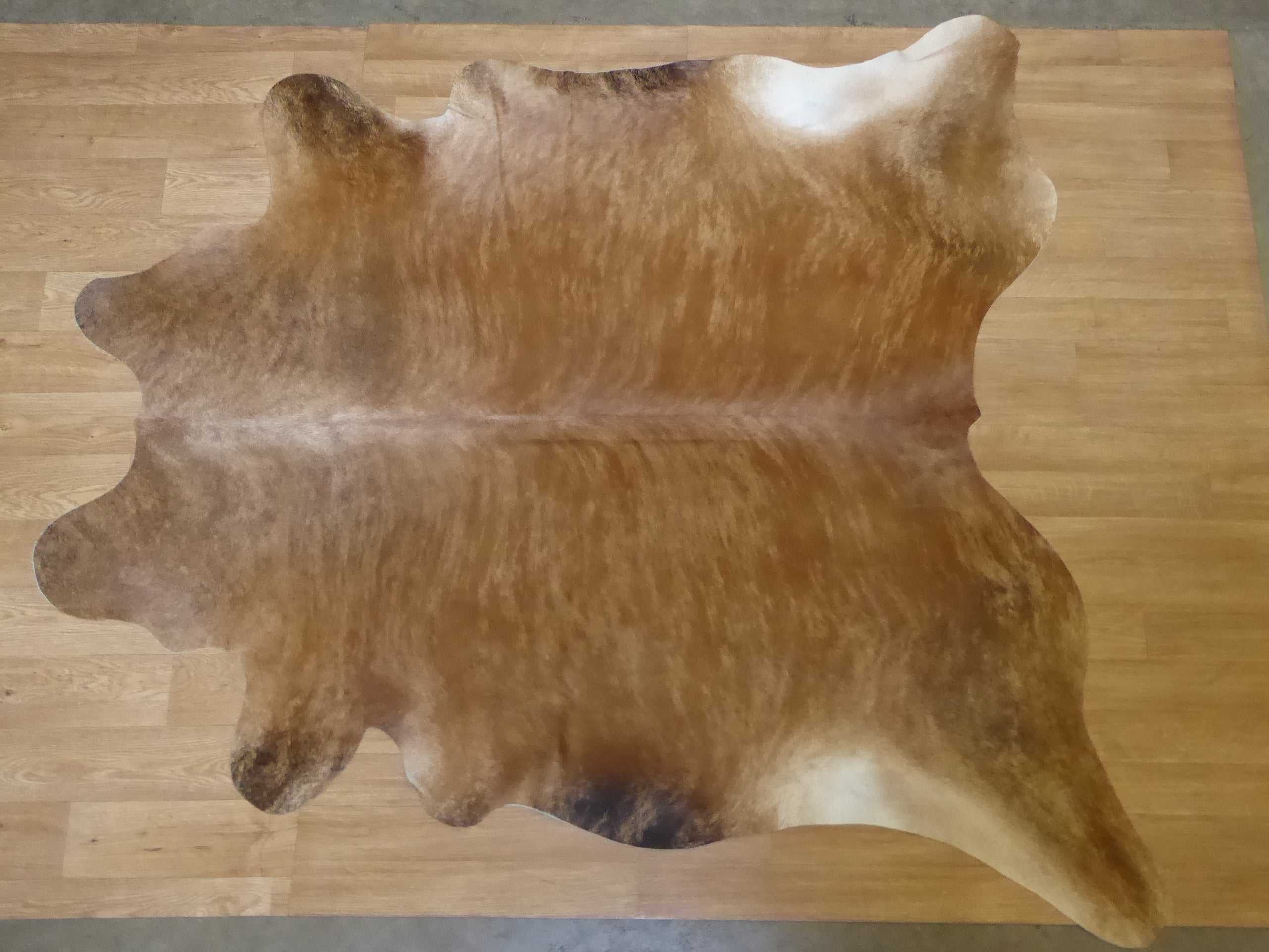 Natural Hair On Cow Hide : This Hide Is perfect For Wall Hanging, Leather Rugs, Leather Bags & Leather Accessories (pic code 1020075)