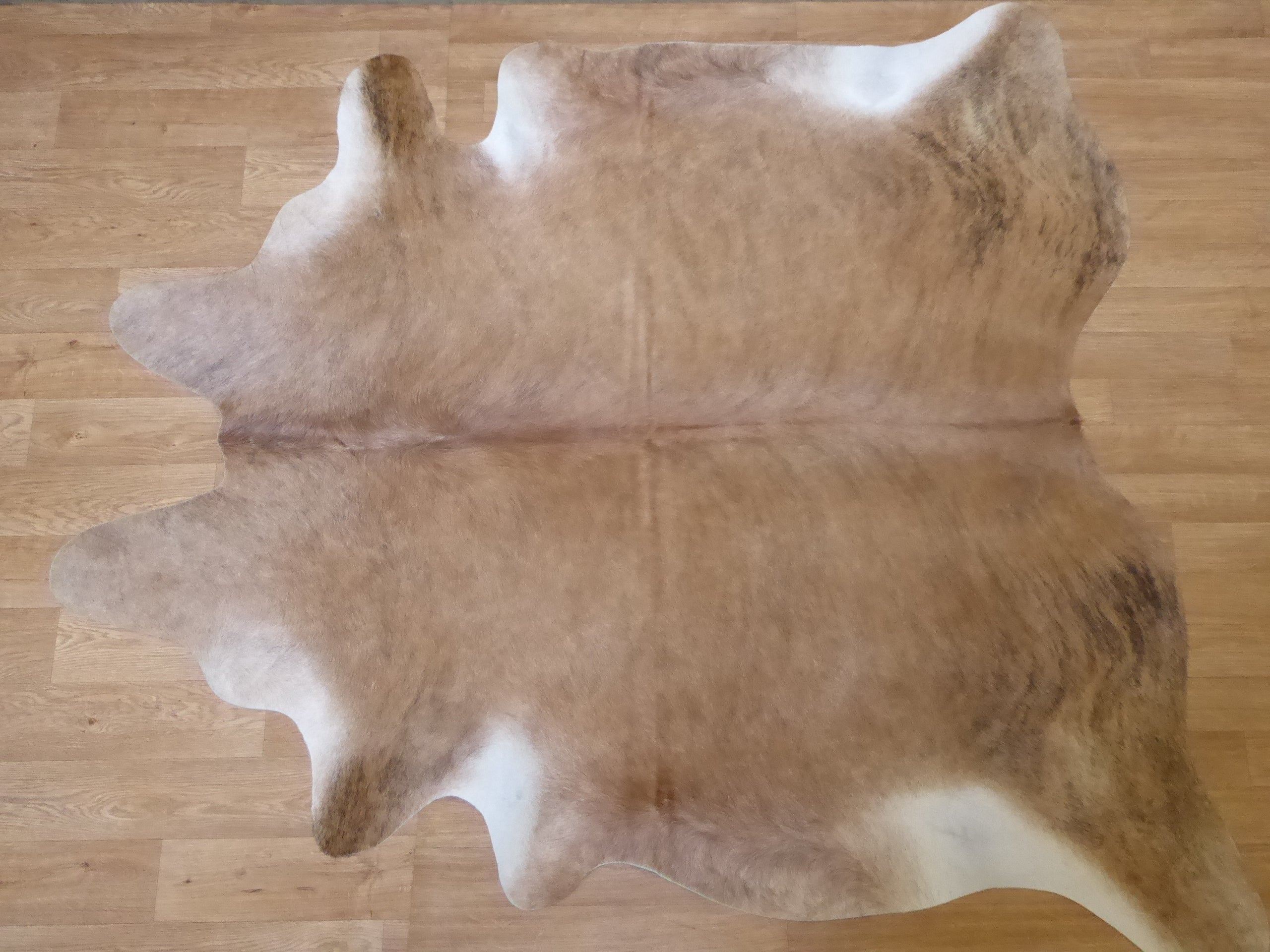 Natural Hair On Cow Hide : This Hide Is Perfect For Wall Hanging, Leather Rugs, Leather Bags & Leather Accessories (pic code 1020101)