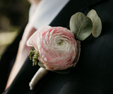 Residential Elopements:  Pretty in Pink Elopement