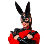 Sexy Bunny Mask