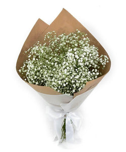 Bouquet de Gypsophilia