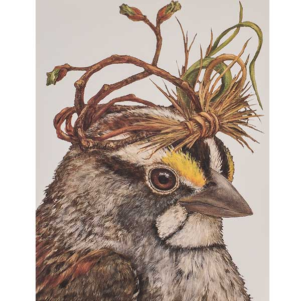 CAESAR SPARROW - Greeting or Note Card by Vicki Sawyer