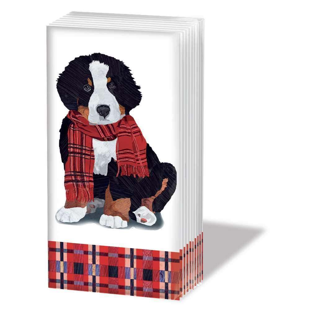 """NOAH"" SNIFF Bernese Mountain Dog Pocket Tissues 1-pack"