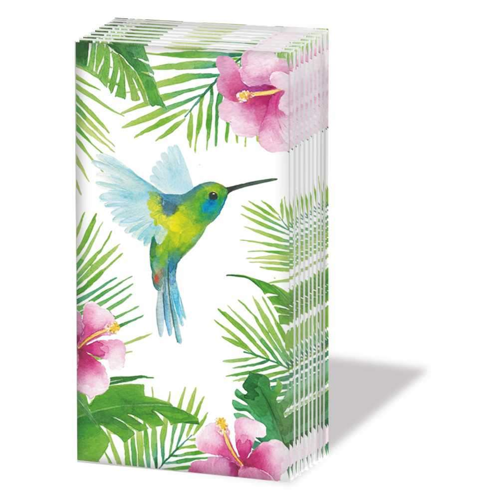 """TROPICAL HUMMINGBIRD"" SNIFF Hummer Bird With Palms Pocket Tissues 1-pack"