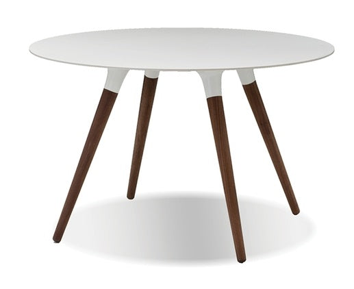 Iztuzu Dining Table - White
