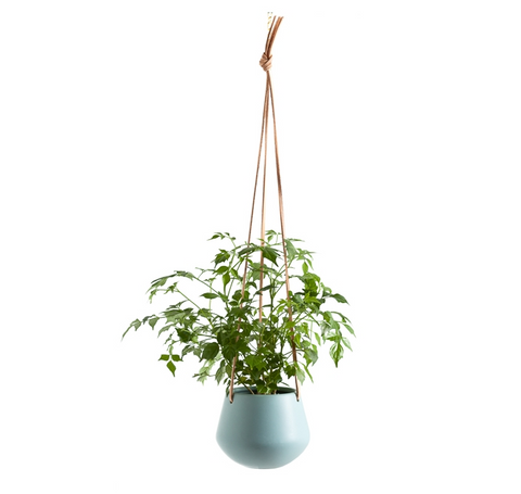 Ashbury Leather Hanging Teal Drop Pot Planter - Small
