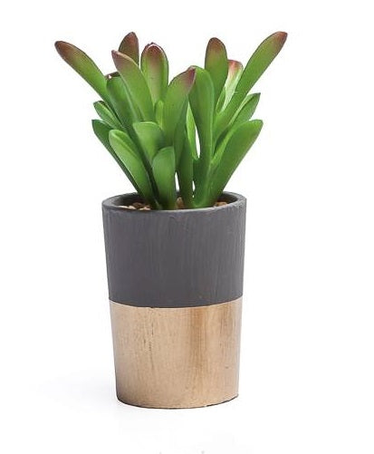 Oro Gold Band Potted Faux Jade Succulent