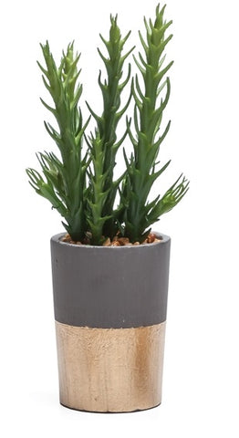 Oro Gold Band Potted Faux Spike Succulent