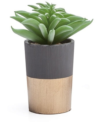 Oro Gold Band Potted Faux Silver Aloe Succulent