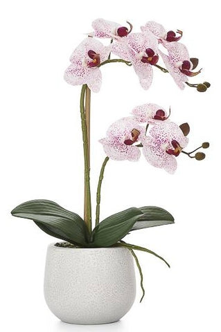 Phalaenopsis Potted Faux Pink Orchid - Medium