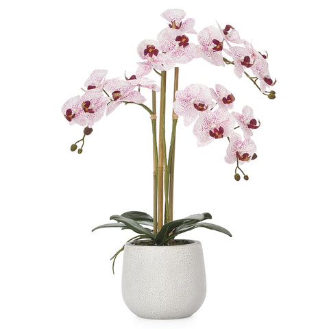 Phalaenopsis Potted Faux Pink Orchid - Large