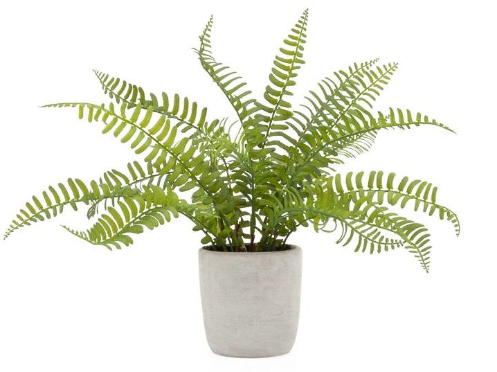 Solaro Round Potted Faux Plant - Boston Fern
