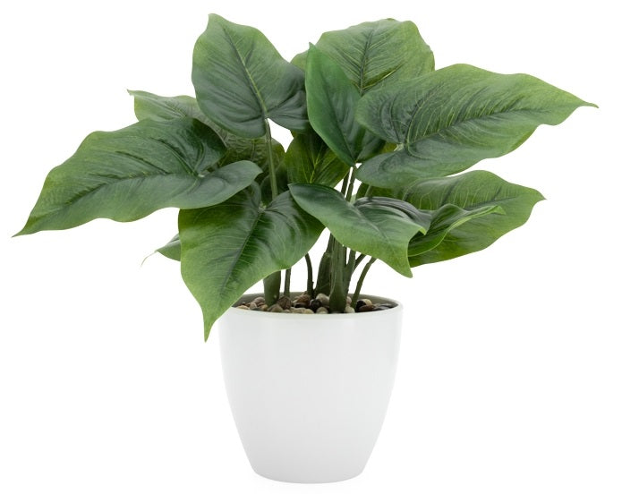 Villa Calla Leaf Faux Potted Plant - Large