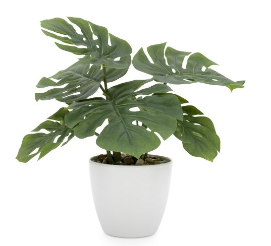 Villa Monstera Faux Potted Plant - Small
