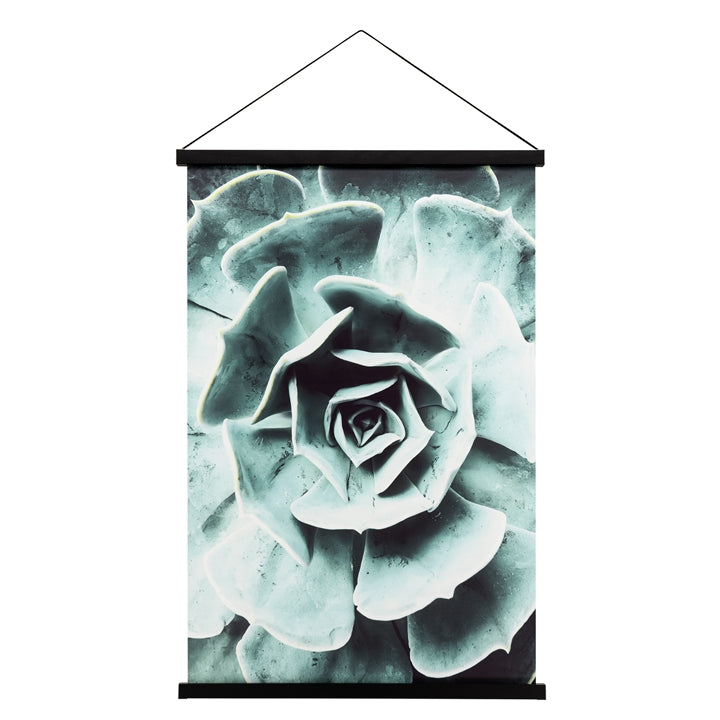 Miko Hanging Printed Canvas Rolled Wall Art - Succulent