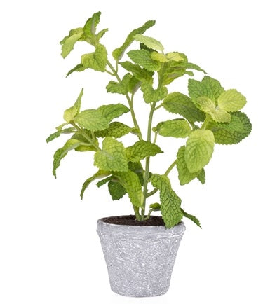 Provence Rustic Potted Faux Mint Herb Plant - Small