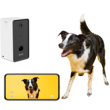 Load image into Gallery viewer, Dog Treat Dispenser Camera - My Pet Supplier