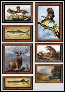 framed or unframed  prints of 19th & early 20th century wilderness and nature art.