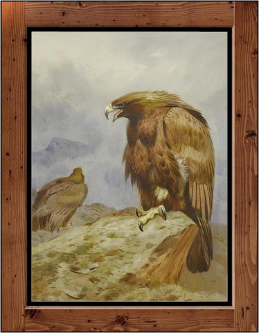 "Archibald Thorburn  ""A Pair of Golden Eagles  (1899)"