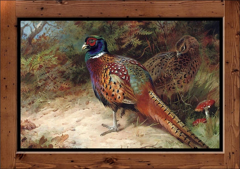 "Archibald Thorburn ""Cock and Hen Pheasant  (1927)"