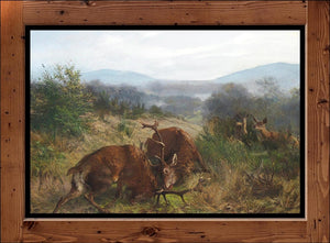 "Carl Friedrich Deiker  ""Fighting Stags""  (circa 1870)"