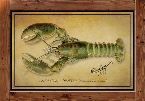 Denton Fish Print – Lobster  (1897)