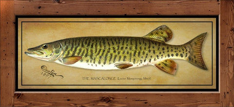 Denton Fish Print – Musky  (1897)
