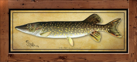 Denton Fish Print - Northern Pike  (1896)
