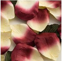 Rose Paper Petals Burgundy and Ivory