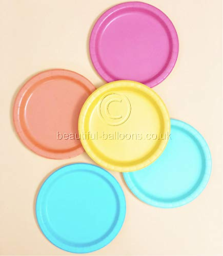 40 x Pastel Rainbow Paper Plates - Rainbow theme party! Gay Pride! Unicorn! Biodegradable!