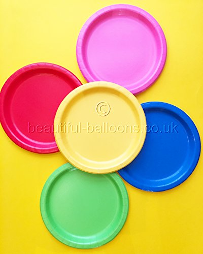 40 x Bright Rainbow Paper Plates - Rainbow Theme Party! Gay Pride!