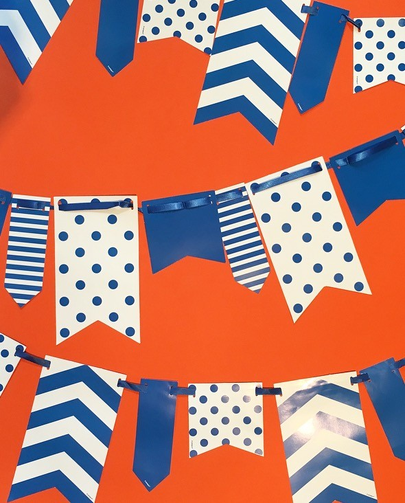 10ft Blue and White Spot and Stripe Reversible Flag Bunting