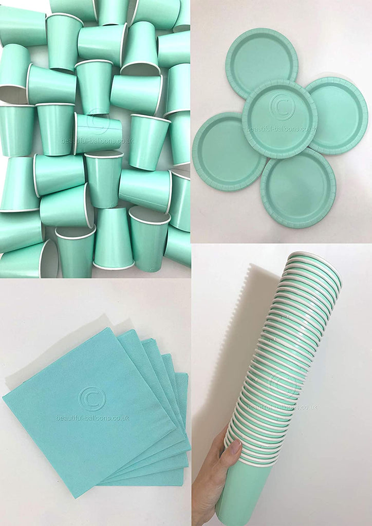 Mint Party Kit - Cups, Napkins and Plates! Complete Kit