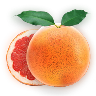 omorfee-grapefruit-essential-oil-grapefruit-oil-for-skin-grapefruit-oil-for-body-massage-grapefruit-oil-for-aromatherapy