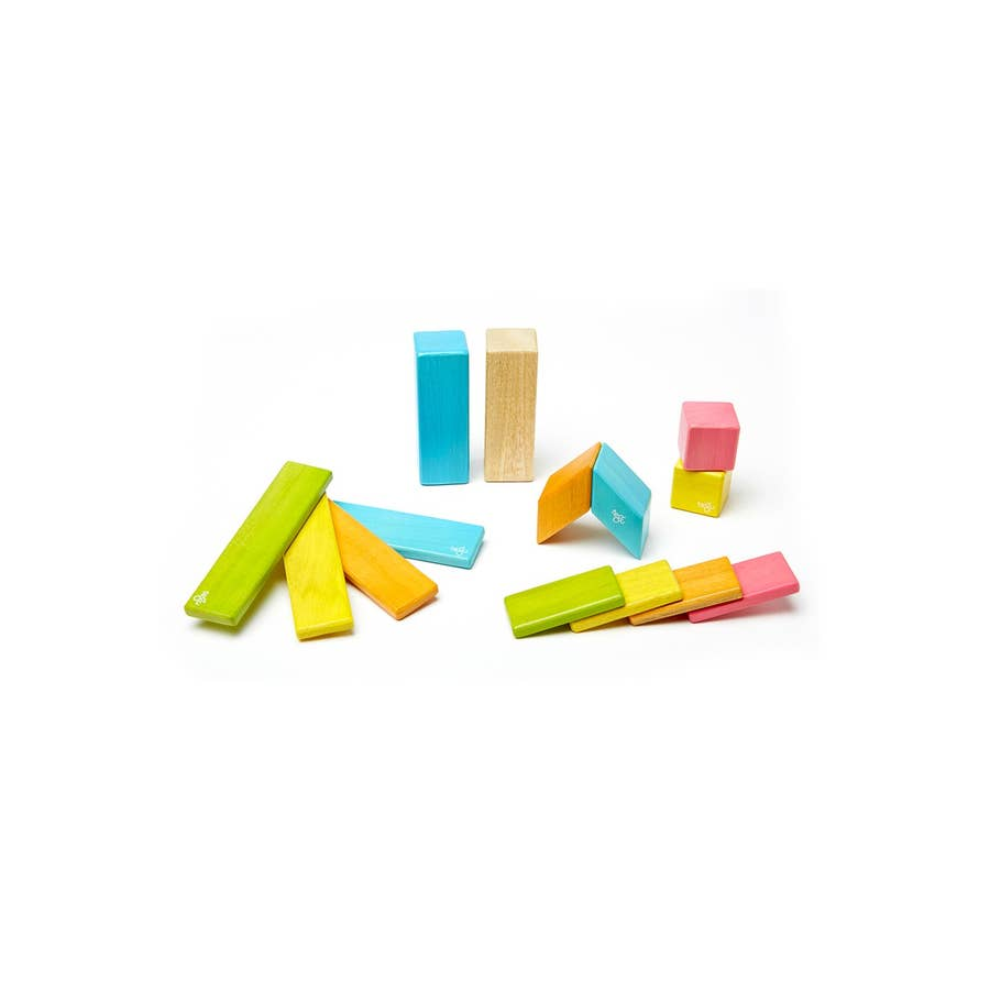 Magnetic Blocks (14 piece) by Tegu