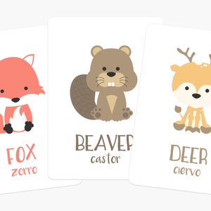 Woodland Animal Flashcards