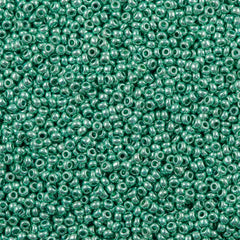 50g Czech Seed Bead 10/0 Metallic Green (18358)